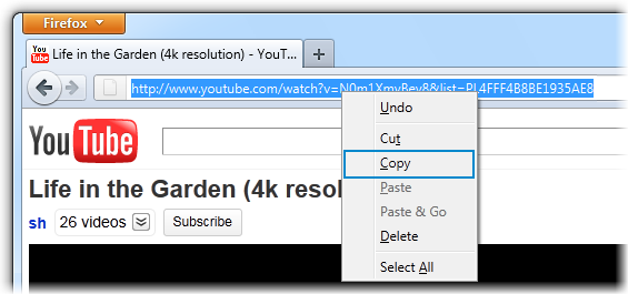 Copy video link