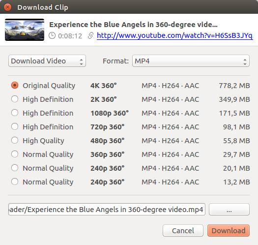 youtube videos downloaden link ändern