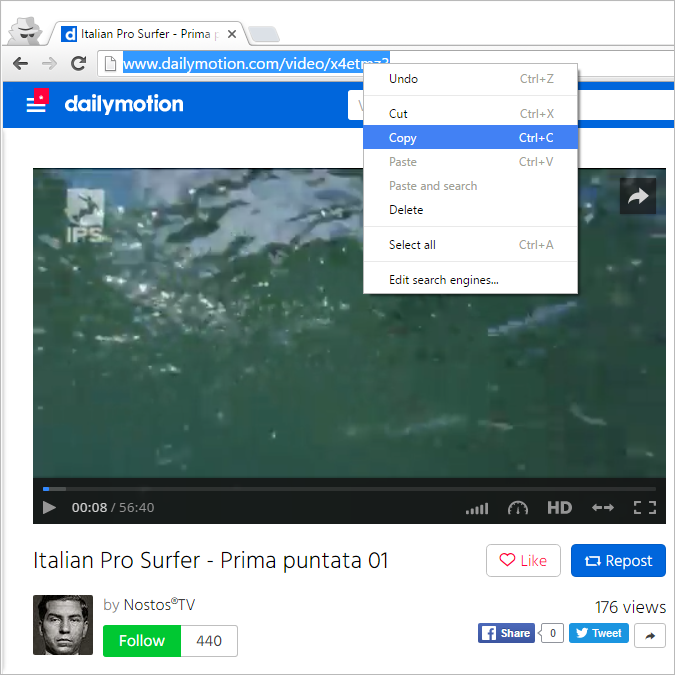 Copy browser link Dailymotion video