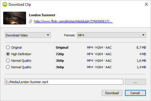 Select quality type and Download Flickr video